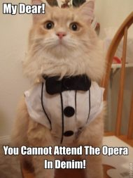 You cannot attend the opera in denim!