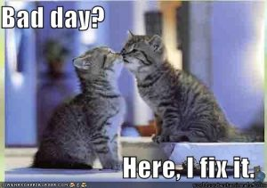 Kitty kisses, captioned 'Bad day? Here, I fix it.'