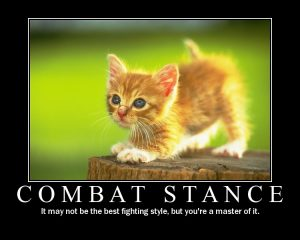 'Combat stance: It may not be the best fighting style, but you're a master of it.'