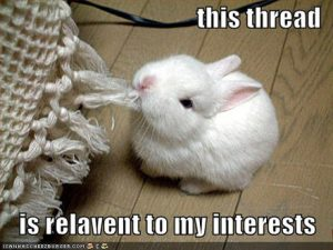 Bunny chewing on a tassel, labeled 'This thread is relevant to my interests'