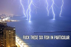 Lightning hitting ocean, labeled 'Fuck these six fish in particular'